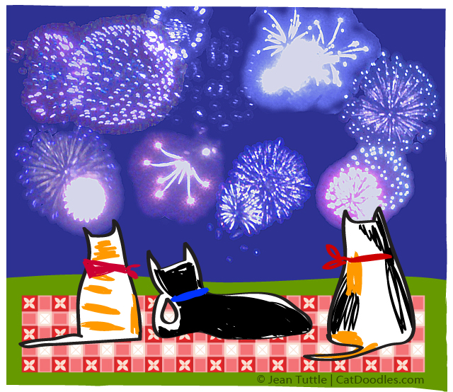 Cats Watching Fireworks